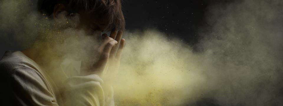 allergies, wellness,