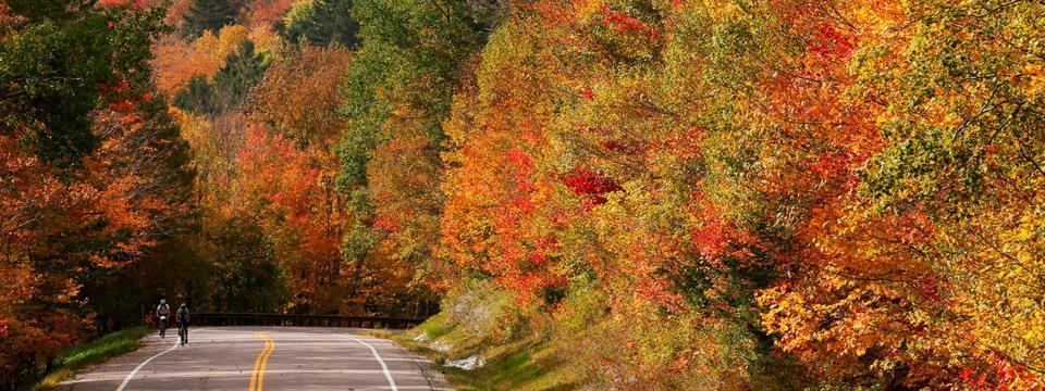 fall, bike, rides, trips, biking, locations, vacations