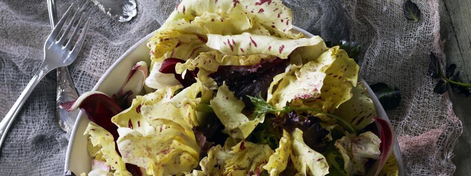 CASTELFRANCO RADICCHIO SALAD, yellow radicchio, salad, lettuce, radicchio