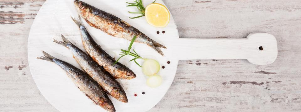 fish you should be eating, oysters, mussels, sardines