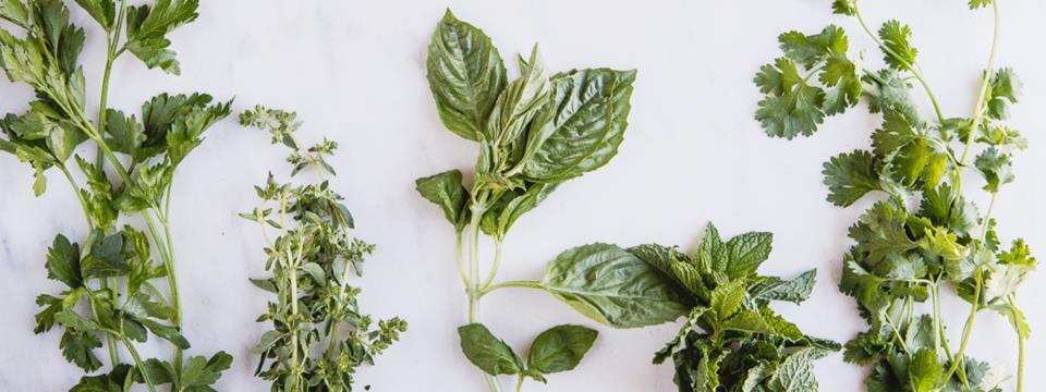 recipe, herbs, salad, marinade
