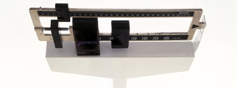 set-point weight debate