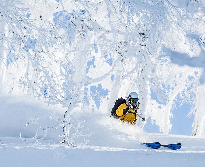 Hokkaido, Japan, heli skiing