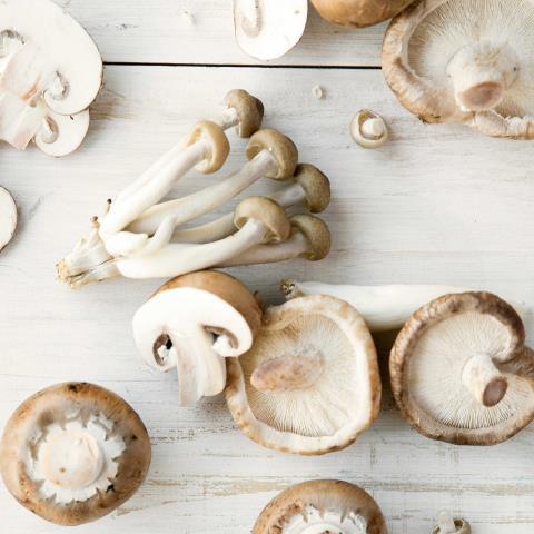 mushroom, grill,cook, microwave