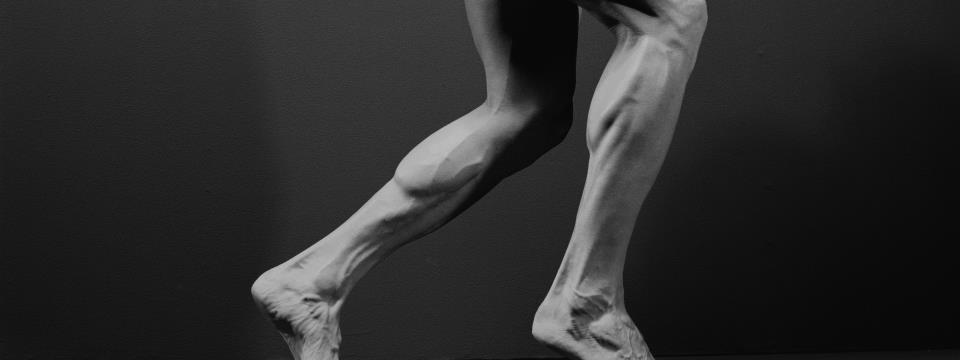strengthen your calves, athletes calves, calves, legs, workout, strength, prevent injury