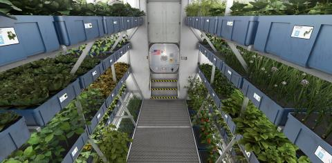 space, planting, food, greenhouse
