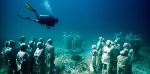 scuba, diving, mexico, food