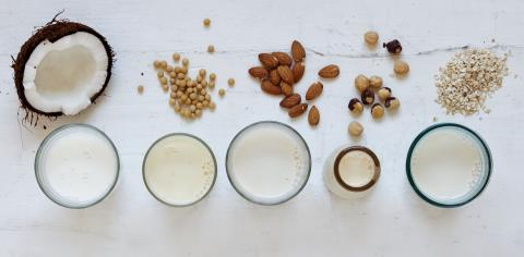 nut milk, pregnancy, dairy alternatives, cow milk, dairy, iodine,