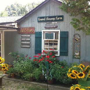 Round Swamp Farm