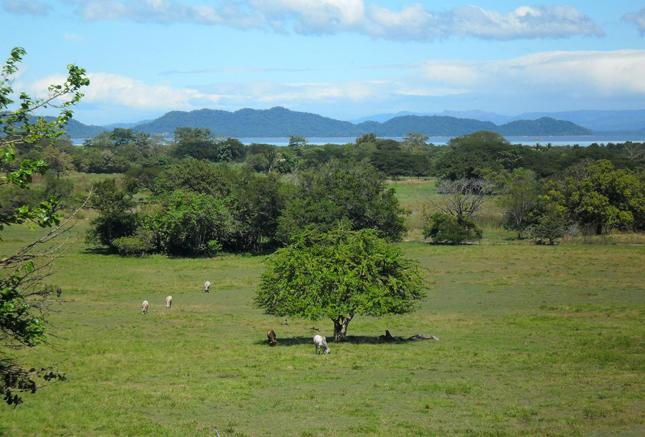 Nikoya, Costa Rica