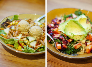 48 hours in cambridge, massachusetts, mass ave cafe, life alive, organic food, eating, nutrition