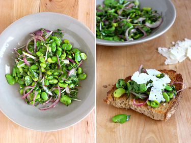gourmette, fava bean salad with shaved red onion, Laura, Loesh-Quintin, cooking Food porn, health, nutrition, eating