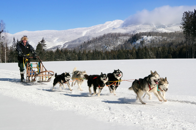 Dog sledding, Mont Tremblant, Canada, Q by Equinox, Adventures, travel, vacation, snow, winter, physical endurance, activities, body, fitness, The Fairmont Tremblant