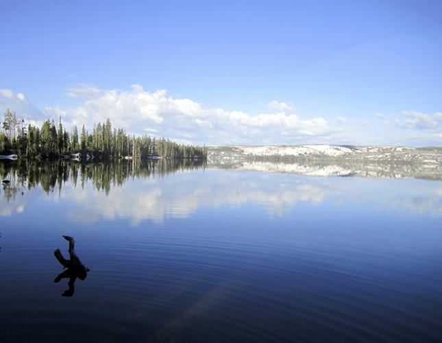 Q Blog, RV, trip, roadtrip, USA, camping, glamping, USA, Yellowstone, National Park, Lewis Lake Campground, lake, water, nature, mountains, weather, waterfalls, rivers,