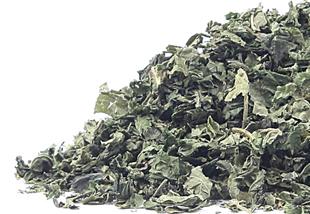 jessa blades,  leaf, herbal tea, vitamins, minerals, body, health, diet, nutrition, healthy lifestyle