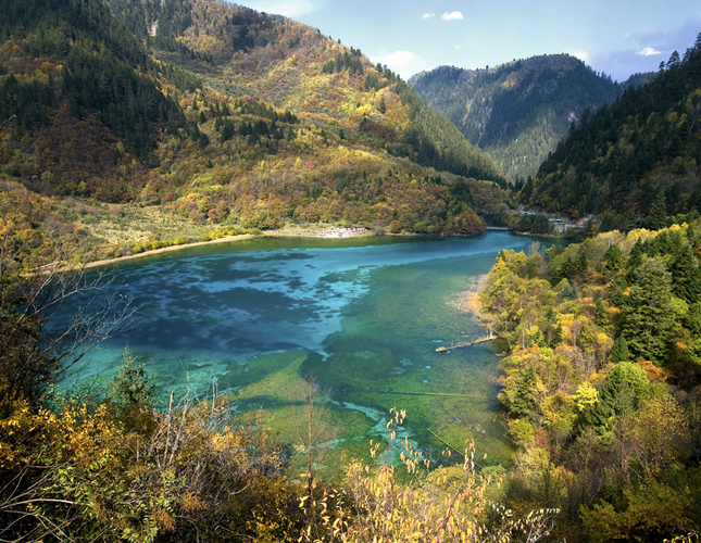 five flower lake, jiuzhaigou, sichuan, china, peacock lake, shallow lakes, water, travel